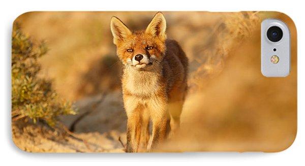 Sunset Fox Cub IPhone Case