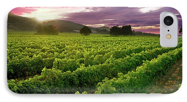 Sunset Over The Vineyard IPhone Case
