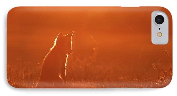 Sunset Series-  Musing Fox IPhone Case