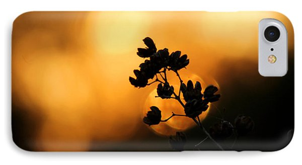 Sunset Silhouette Of Foliage IPhone Case
