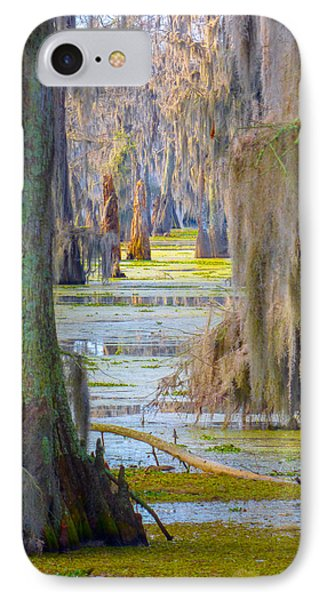 Swamp Curtains In February IPhone Case