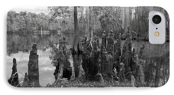 Swamp Stump IPhone Case