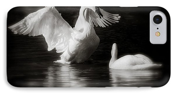 Swan Display IPhone Case