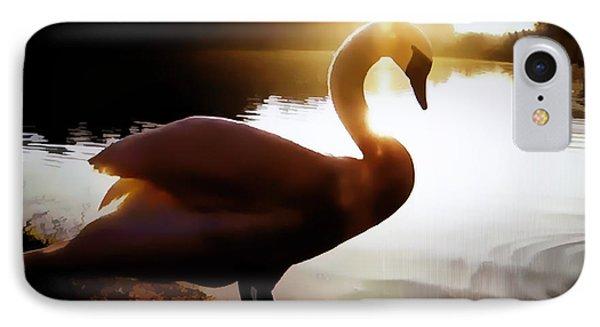 Swan In Evening Sun IPhone Case