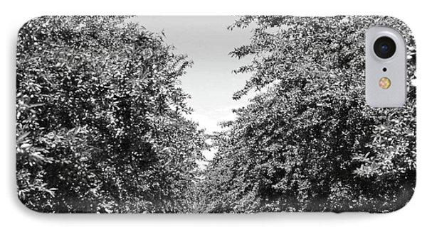 Sweet Path IPhone Case