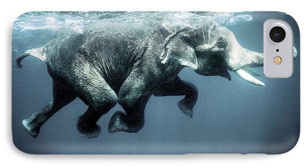 Swimming Elephant IPhone Case