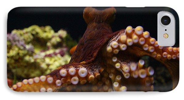 Tako Not Taco Hawaiian Octopus IPhone Case