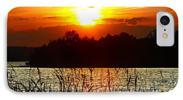Tall Grass Sunset 2 Smith Mountain Lake IPhone Case
