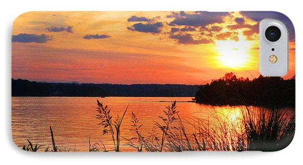 Tall Grass Sunset Smith Mountain Lake IPhone Case