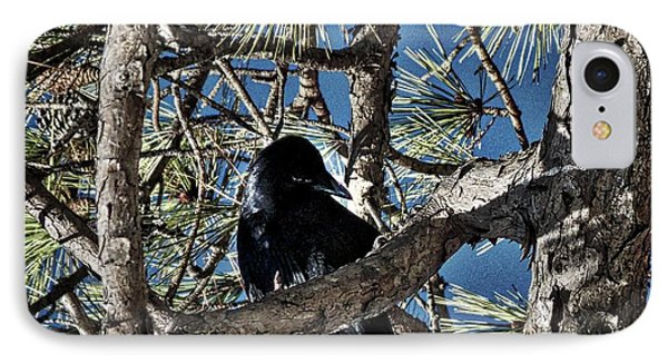 That Crow In The Backyard IPhone Case