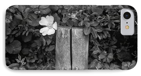 The Allotment Project - Dog Rose IPhone Case