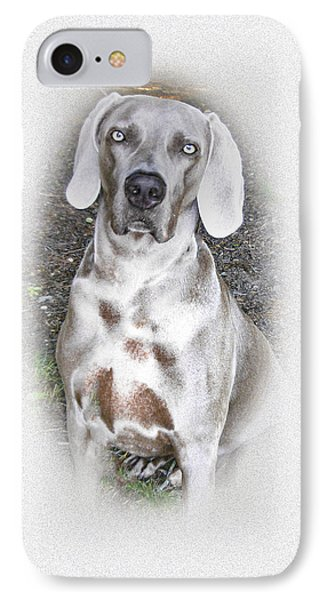 iPhone 8 Case - The Beautiful Weimaraner Breed by Mother Nature