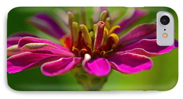 The Esteemed Flower IPhone Case