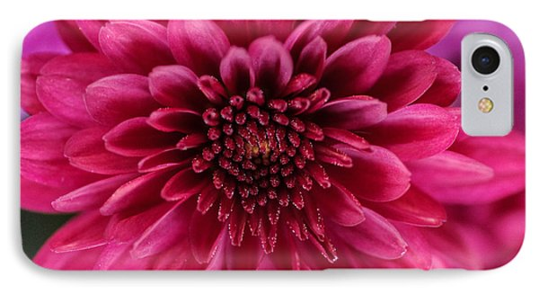 The Eye Of Pink Flower IPhone Case