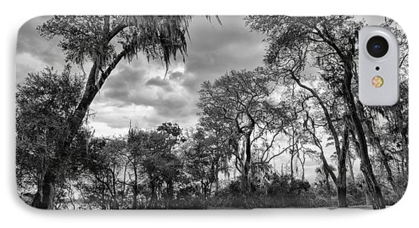 The Grounds Of Fort Caroline National Memorial IPhone Case