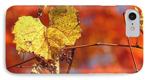 The Last Yellow Leaves IPhone Case