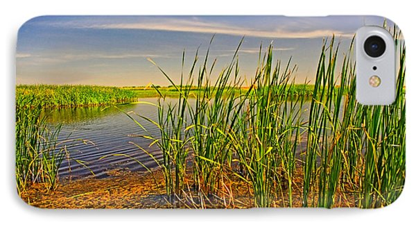 The Marshes Of Brazoria IPhone Case