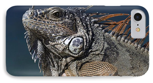 The Night Of The Iguana IPhone Case