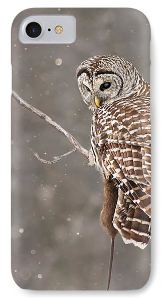 The Silent Hunter IPhone Case