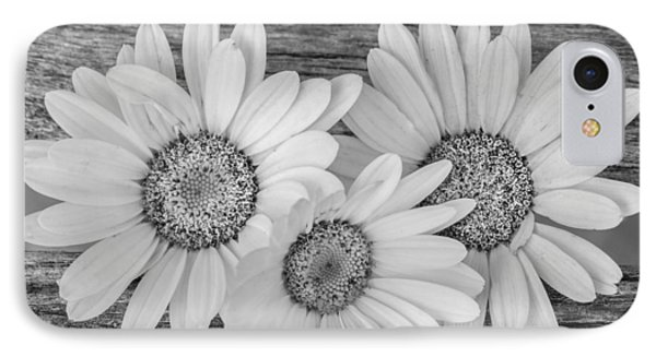 The Three Of Us IPhone Case