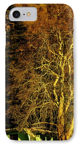The Tree And The House IPhone Case