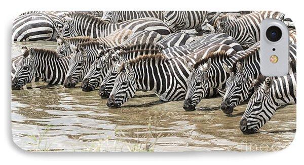 Thirsty Zebras IPhone Case