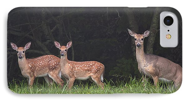 Three Does IPhone Case