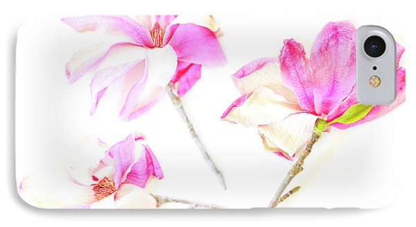 Three Magnolia Flowers IPhone Case