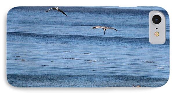 Three Pelicans Diving IPhone Case