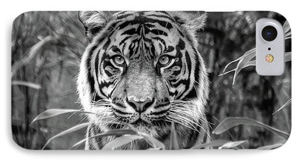 Tiger B/w IPhone Case