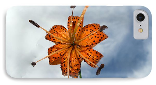 Tiger Lily In A Shower IPhone Case