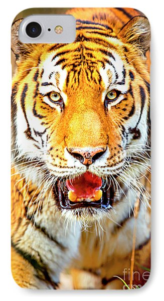 Tiger On The Hunt IPhone Case