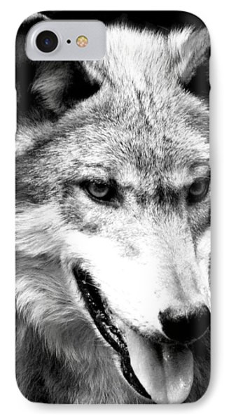 Timber Wolf IPhone Case