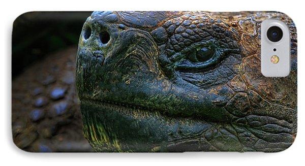 Tortoise 2 IPhone Case