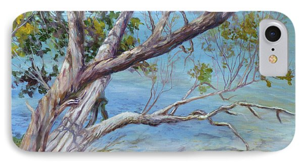 Tree At Islamorada Key IPhone Case
