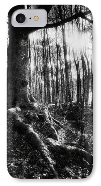 Trees At The Entrance To The Valley Of No Return IPhone Case
