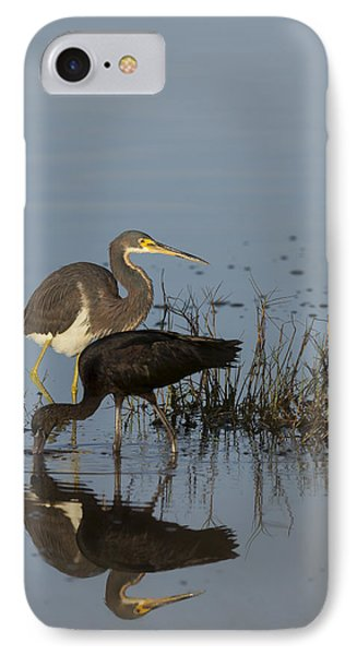 Tri-colored Heron And Glossy Ibis IPhone Case