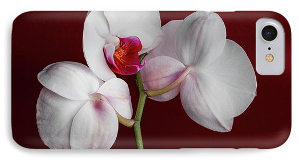 Orchid iPhone 8 Case - Trio Of Orchids by Tom Mc Nemar