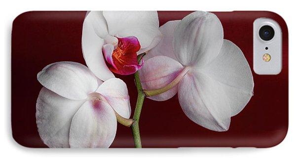 Trio Of Orchids IPhone Case