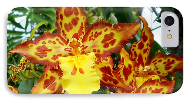 Tropical Red And Yellow Orchids IPhone Case