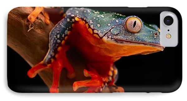 tropical tree frog Cruziohyla craspedotus IPhone Case