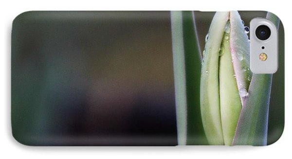 Tulip Bud IPhone Case