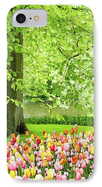 Tulip Garden - Amsterdam IPhone Case