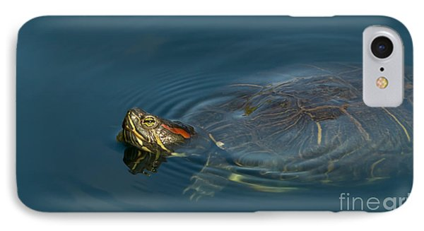 Turtle Floating In Calm Waters IPhone Case