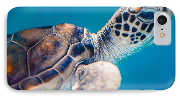 Turtle Town IPhone Case