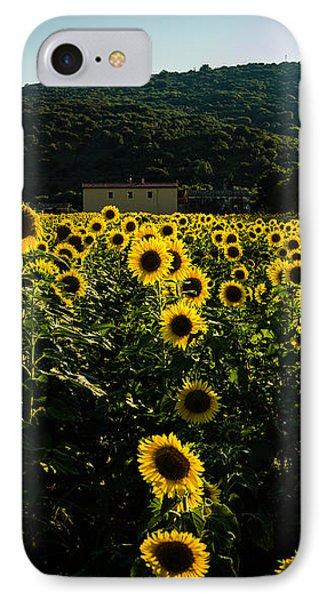 Tuscany - Sunflowers At Sunset IPhone Case