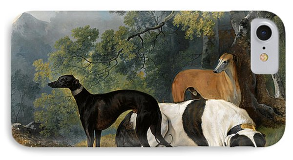 Two Greyhounds And A Mastif Belonging To The Duke Of Hamilton IPhone Case