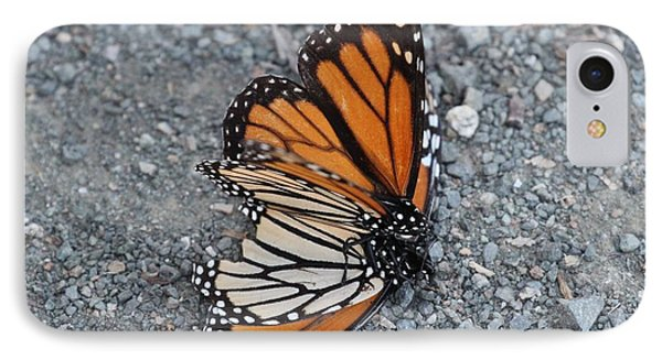 Two Monarchs Aflutter IPhone Case