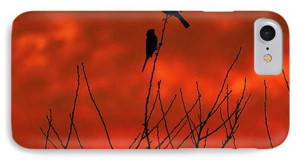 IPhone Case featuring the photograph Two On A Twig by Mark Blauhoefer