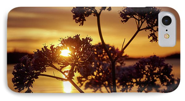 Valerian Sunset IPhone Case